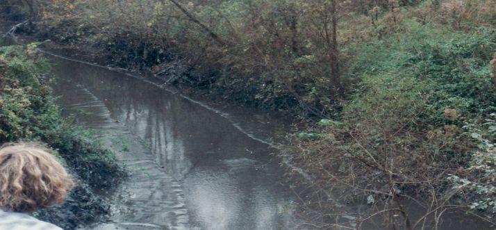 Martin-County-Sludge-Spill-2000