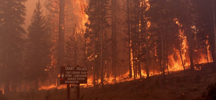 Yellowstone-Wildfires-1988
