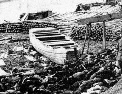 nanking-massacre-december-13-1937