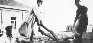 ukraine-catastrophe-november-1932